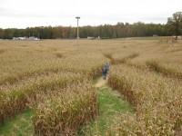 Bowles Farm