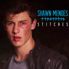 Shawn Mendes Stitiches